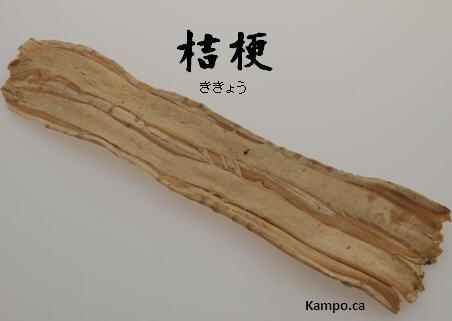 Kikkyo