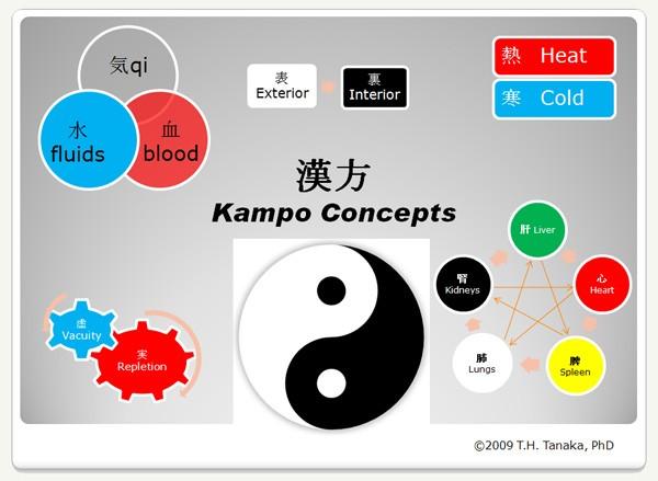 kampo-concepts